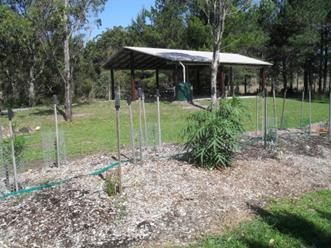 Bush Tucker and Medicine Garden