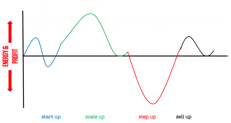Business lifecycle graph.