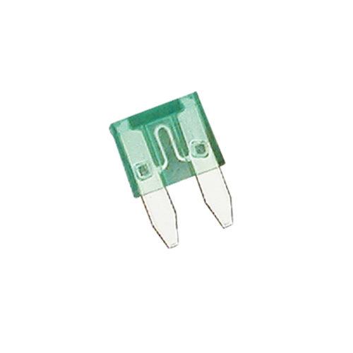 Champion 30Amp Mini Blade Fuse (Green) -15pk
