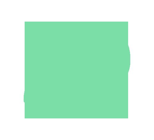 icon-kiwi-colour