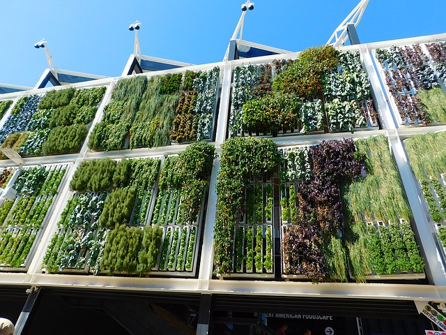 Passive gardens, such as vertical walls, can soften environments, dampen sound, and improve health outcomes.