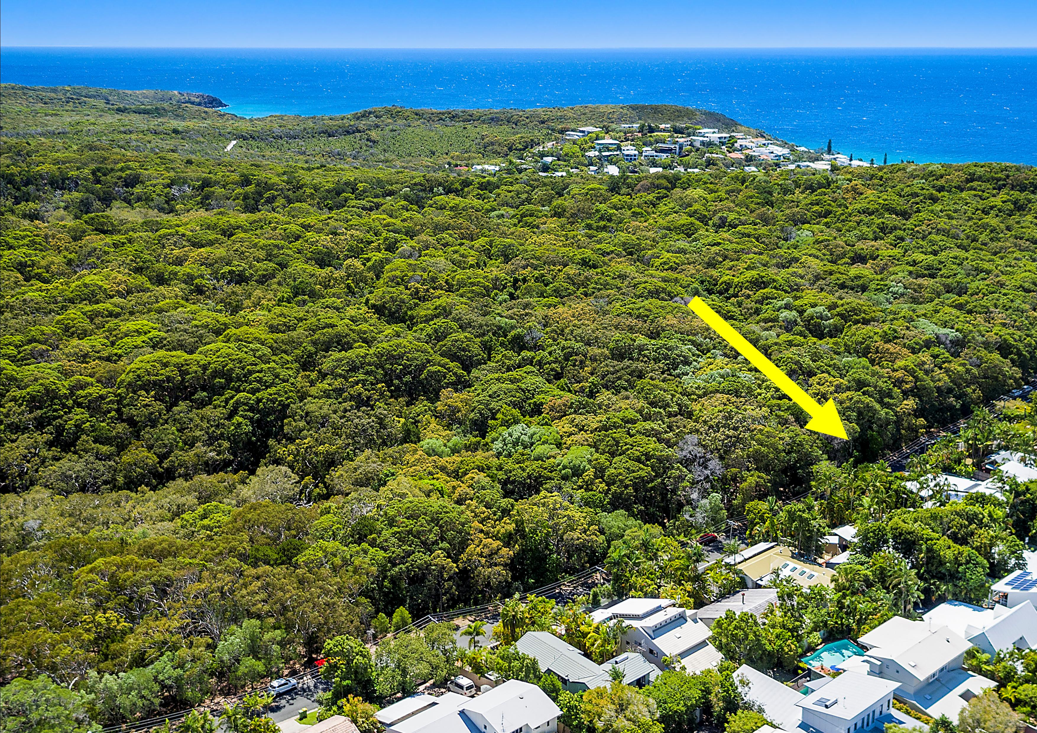 LIVING ON THE EDGE OF NOOSA NATIONAL PARK