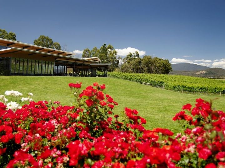 Balgownie Estate Resort Yarra Glen