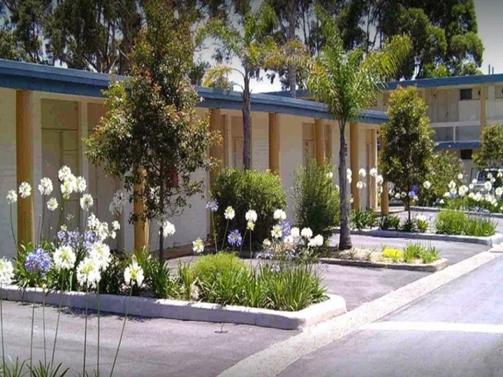 Black Dolphin Resort Motel And Apartments