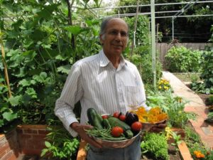 Gardening image 1