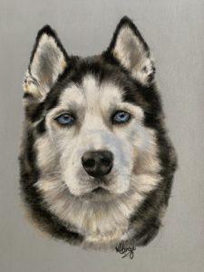 Dog pet portrait 2