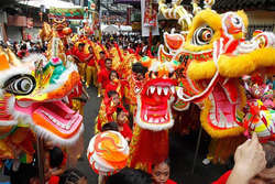 Chinese New Year Festival thumbnail