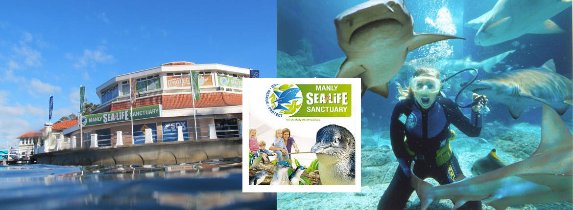 24 Hour Pass and Manly Sea Life Sanctuary banner