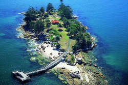 AusDay Shark Island Picnic thumbnail