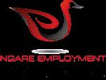 Ngare Employment