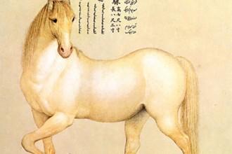 Castiglione Detail Yellow Horse