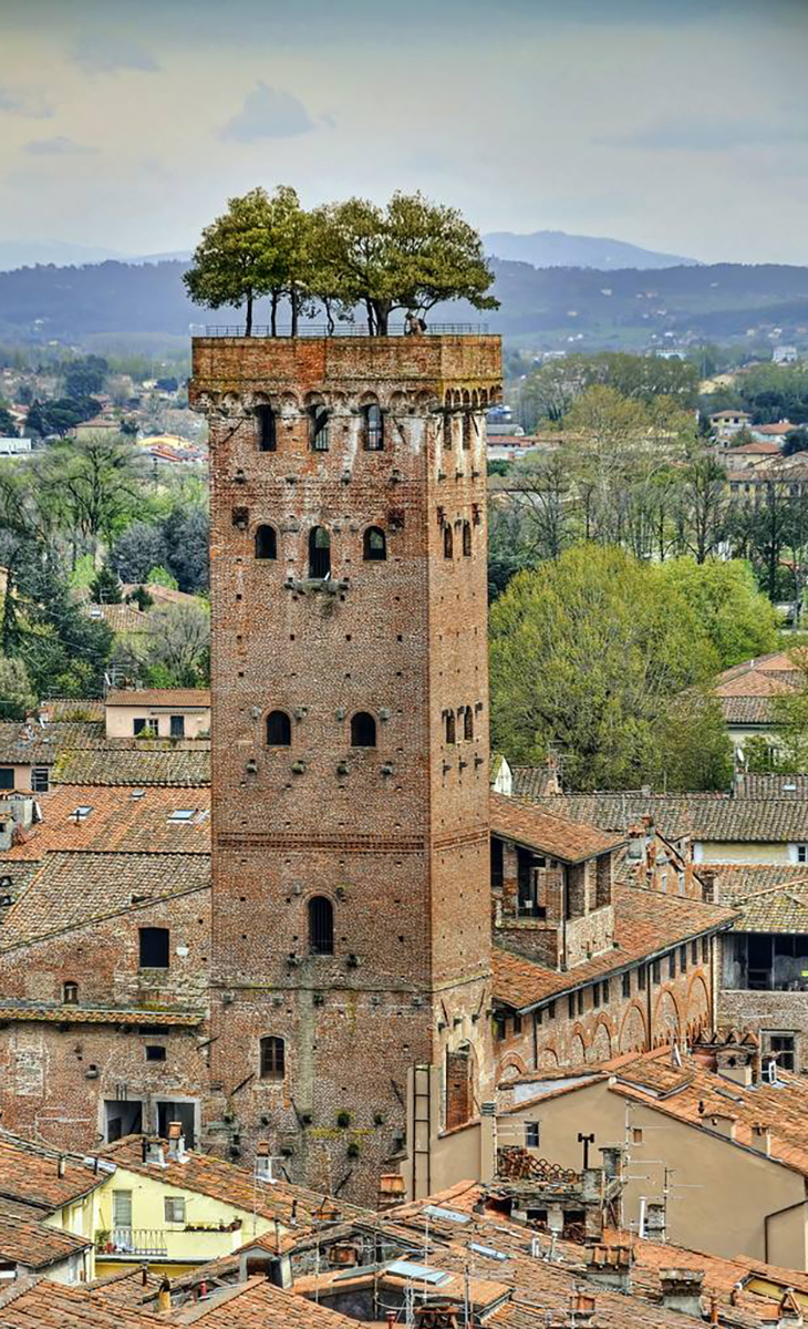 Tower in Lucca, Italy