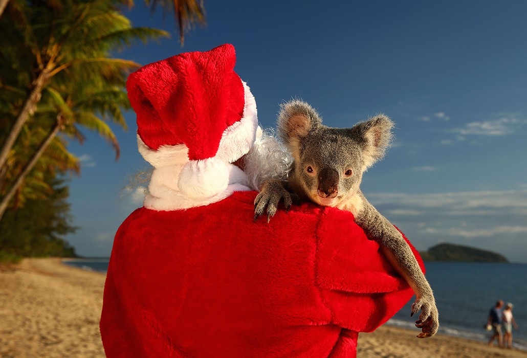 Christmas In Queensland