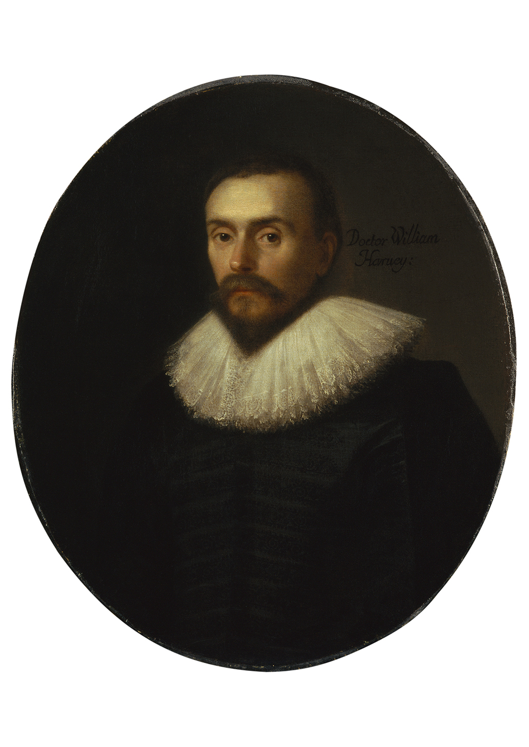 William Harvey by Daniel Mijtens courtesy ©National Portrait Gallery