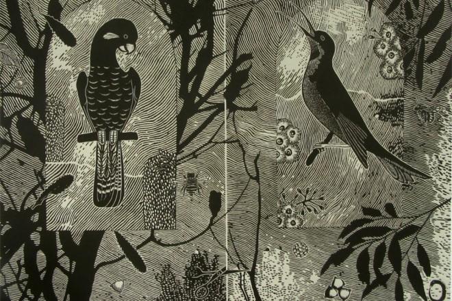 Jenny Kitchener: Pollinate Review – Grafton Regional Gallery