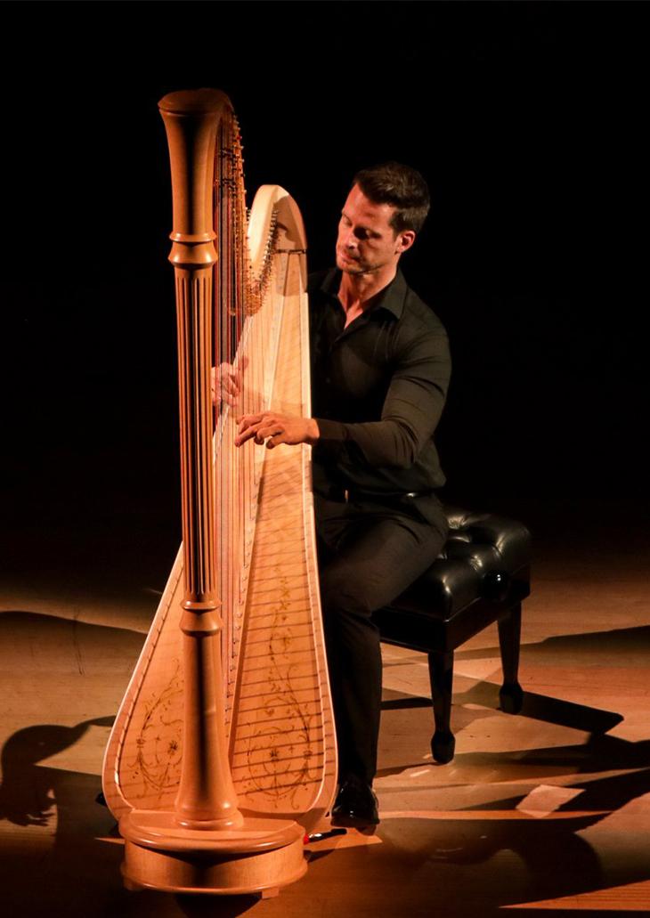 Harp Solo copy