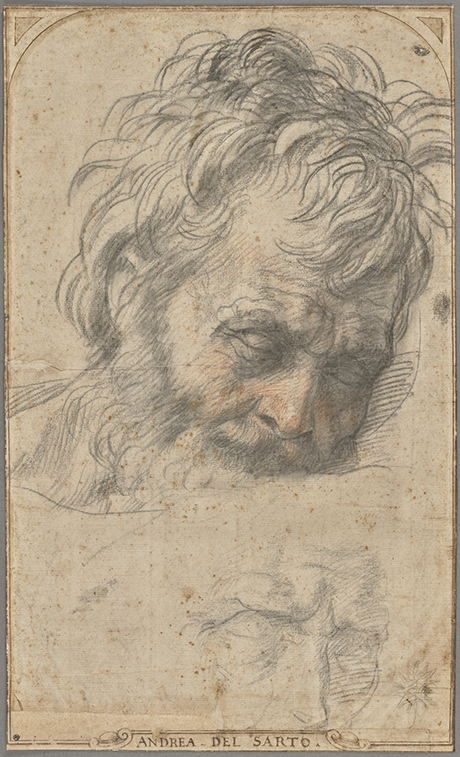 Study for the Head of Saint Joseph (recto); Two Studies of Legs (verso); Andrea del Sarto (Italian, 1486 - 1530); Florence, Italy; about 1526–1527; Red and black chalks (recto); red chalk (verso); 37.5 × 22.6 cm (14 3/4 × 8 7/8 in.); 2017.73 courtesy The Getty Museum, Getty Center, Los Angeles