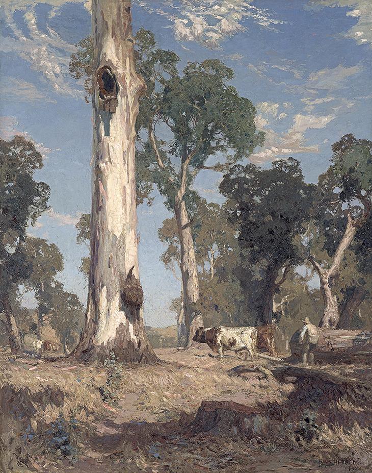 Hans Heysen Eucalypt