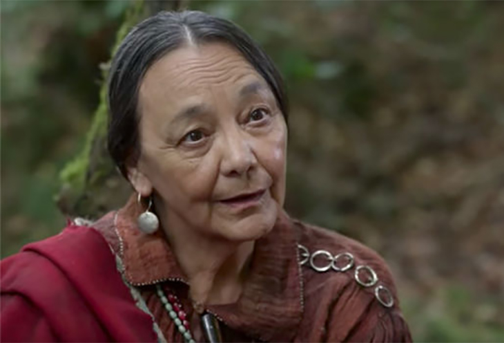 Cherokee Healer
