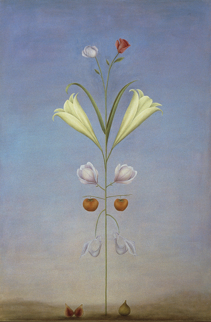Rosslynd Piggott, Most beautiful plant 1989 oil on linen 183.0 x 121.5cm © The artist Photo: courtesy the artist