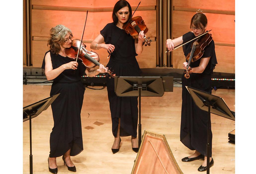 Trio of Violas aBO