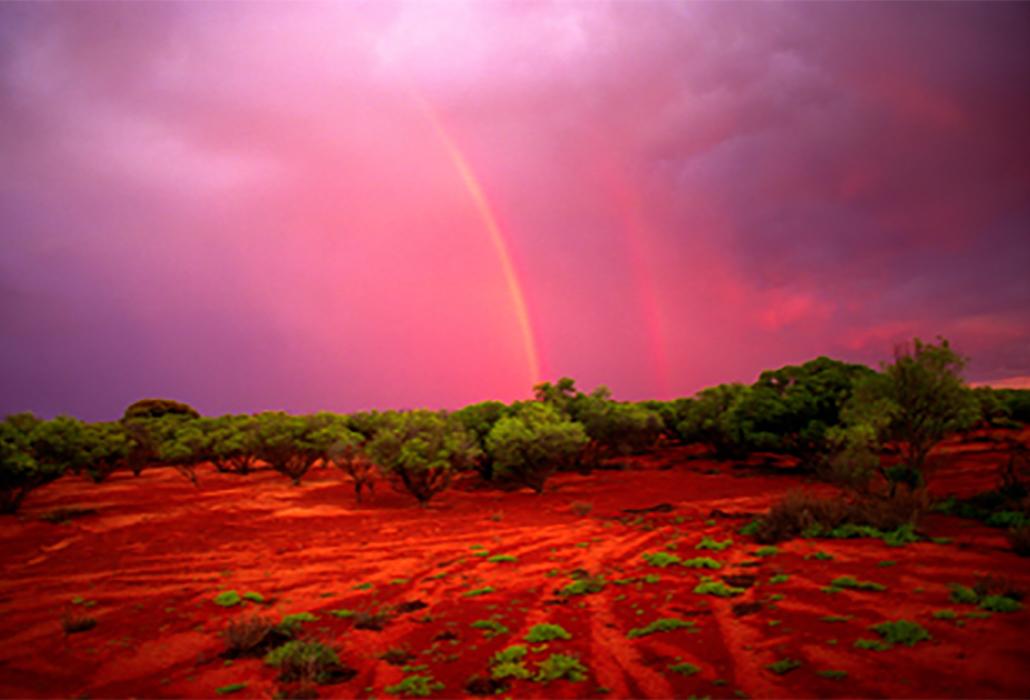 Joyce Evans; Tallaringa Springs Rainbow,