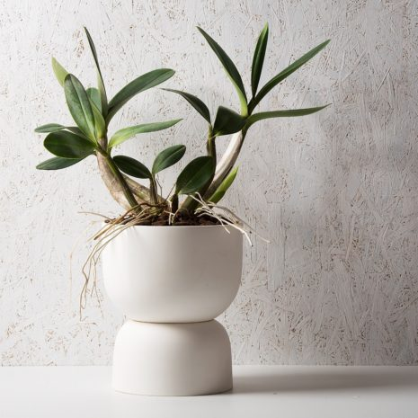 Raw Earth Plant Stand Pots