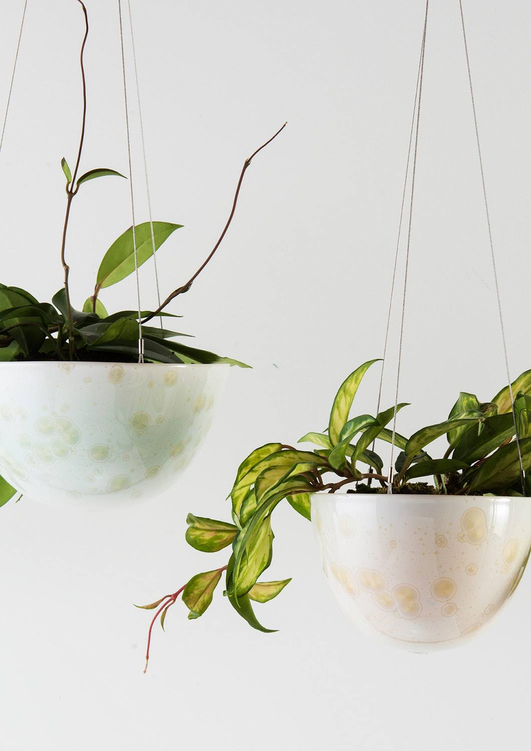 Angus & Celeste Crystalline Green and Yellow Hanging Planters