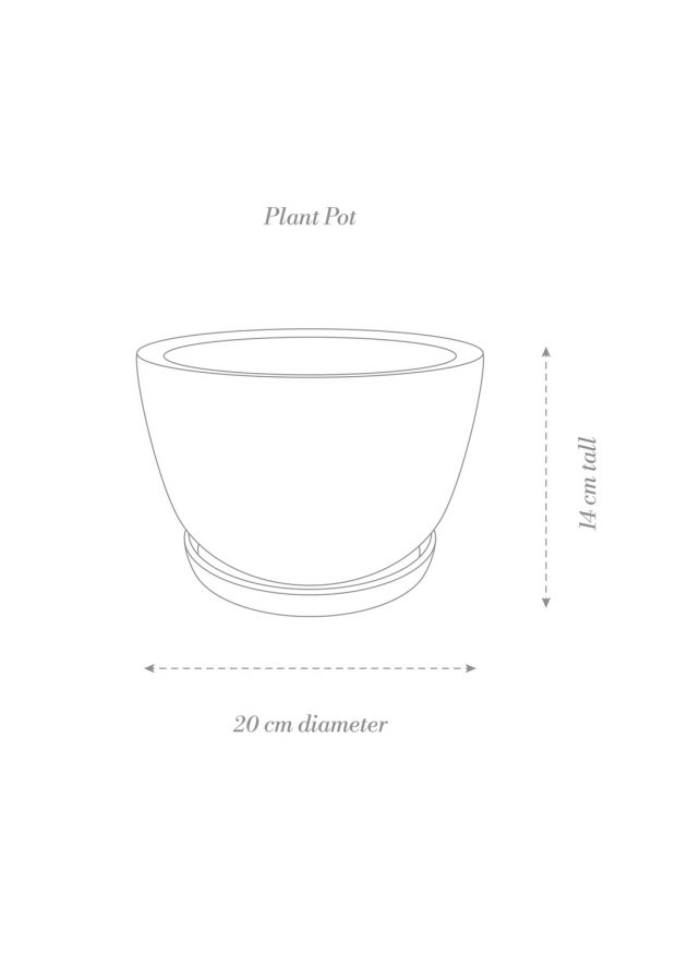Decorative Plant Pot Product Diagram