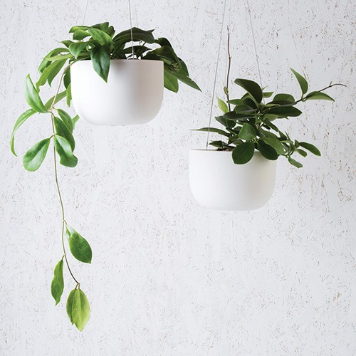 Angus & Celeste Raw Earth Hanging Planters
