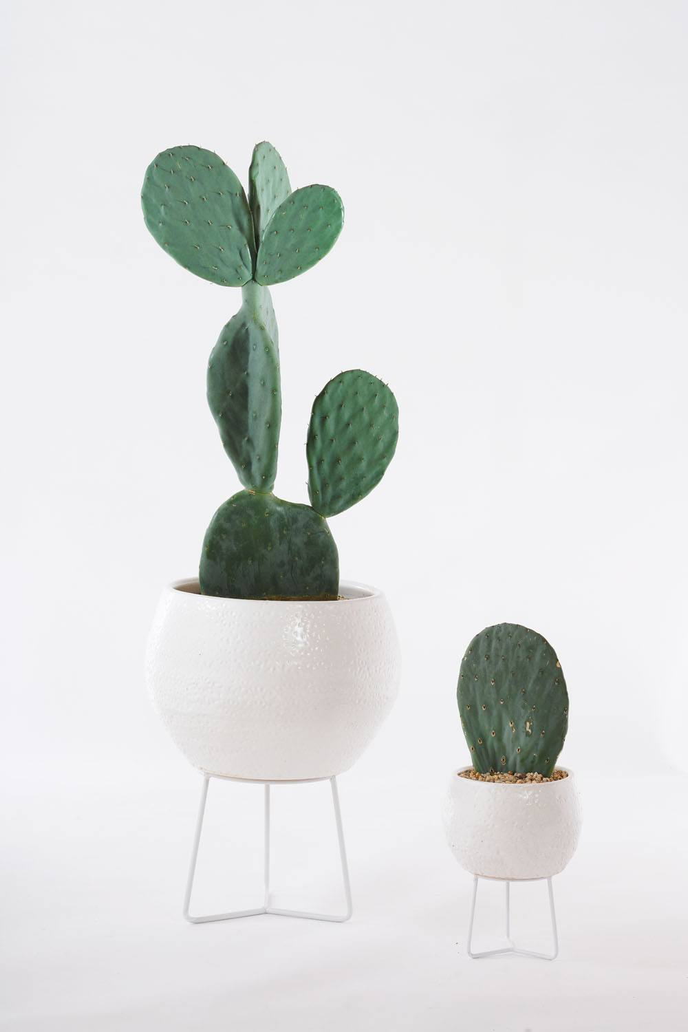 Angus & Celeste Hand-thrown Boulder Plant Stand Pots