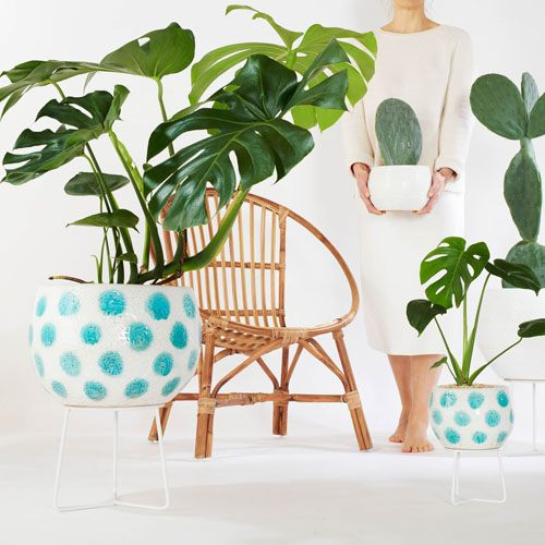 Hand-thrown Boulder Plant Stand Pots