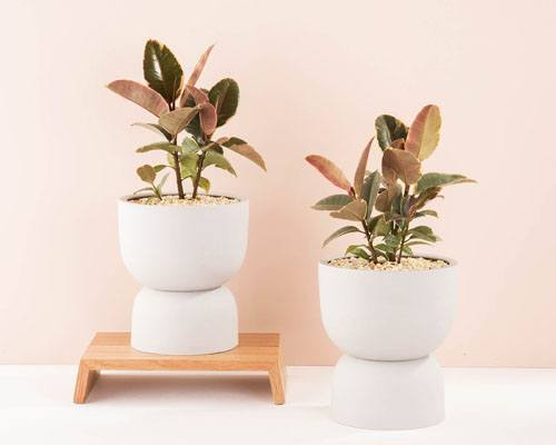 Raw Earth Plant Pots