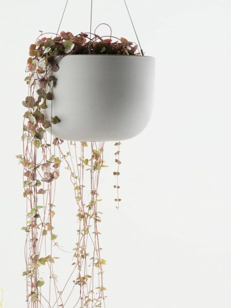 Angus & Celeste Raw Earth Hanging Planter Siltstone Grey