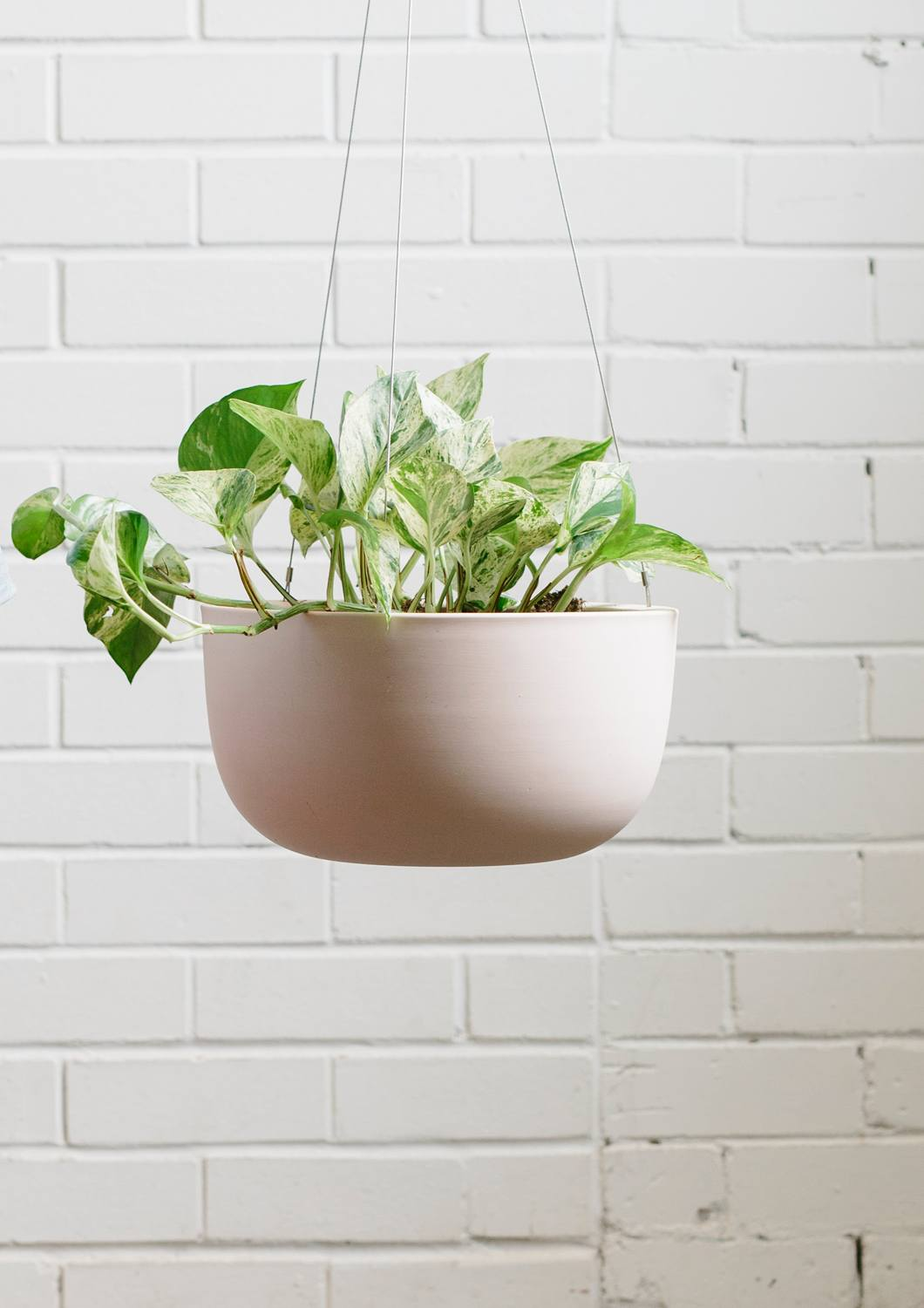 Angus & Celeste Raw Earth Hanging Planter Rock Salt Pink Large