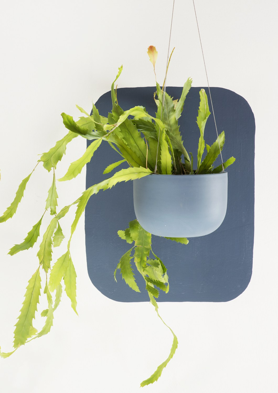 Angus & Celeste Raw Earth Hanging Planter Slate Blue