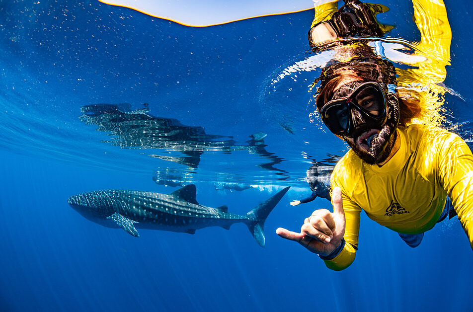 Jess gives the Rock On hand signal while taking a selfie with a whale shark