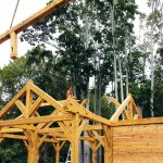 Why build with wood? Inside this unique material