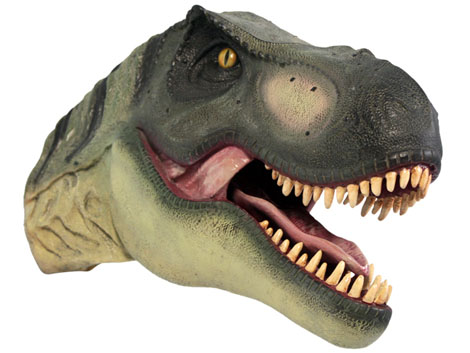 Dinosaur Heads Product Ods