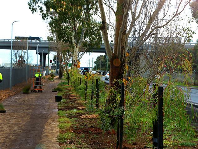 Melbourne rail corridor project ods for Landscape contractors melbourne