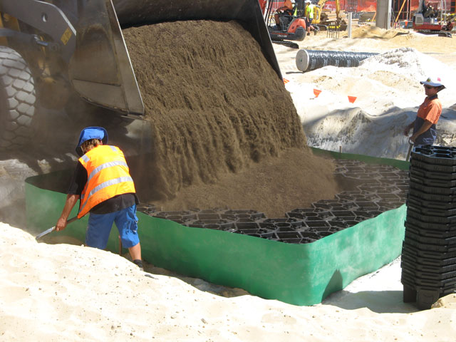 Soil cells support basement trees in wa project ods for Soil support