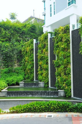 Elmich vgm green wall project ods for Green feature wall