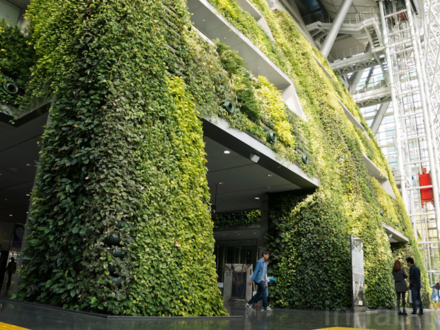 worlds largest indoor vertical - photo #24