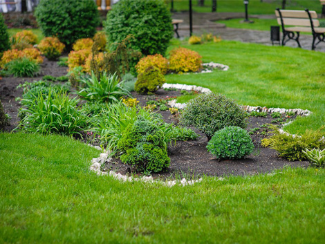 Soft landscaping specialists product ods for Soft landscape materials