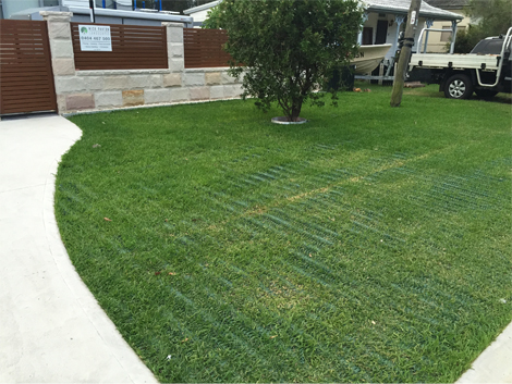 Turf & Grass Reinforcement - Product | ODS