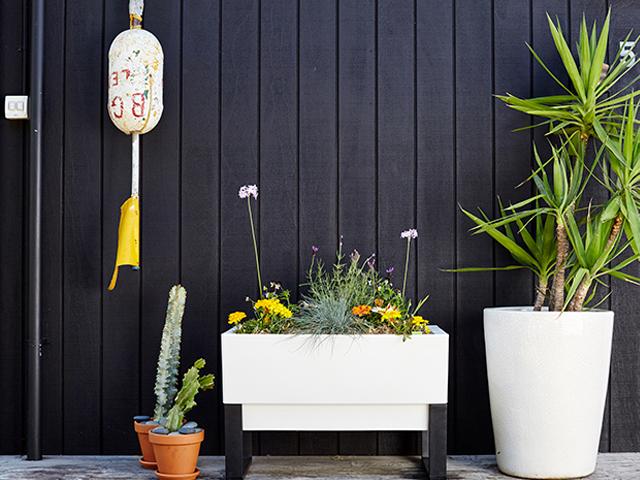 Glowpear Urban Garden Self Watering Planter Product Ods