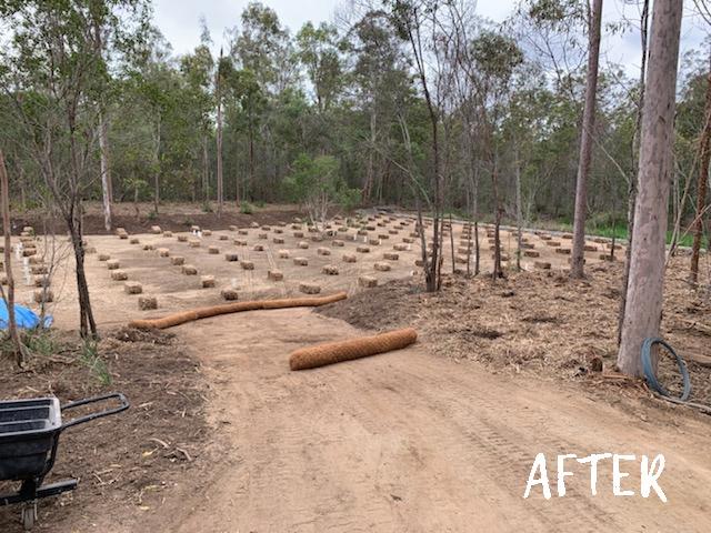 bioretention basin rehabilitation total environmental concepts