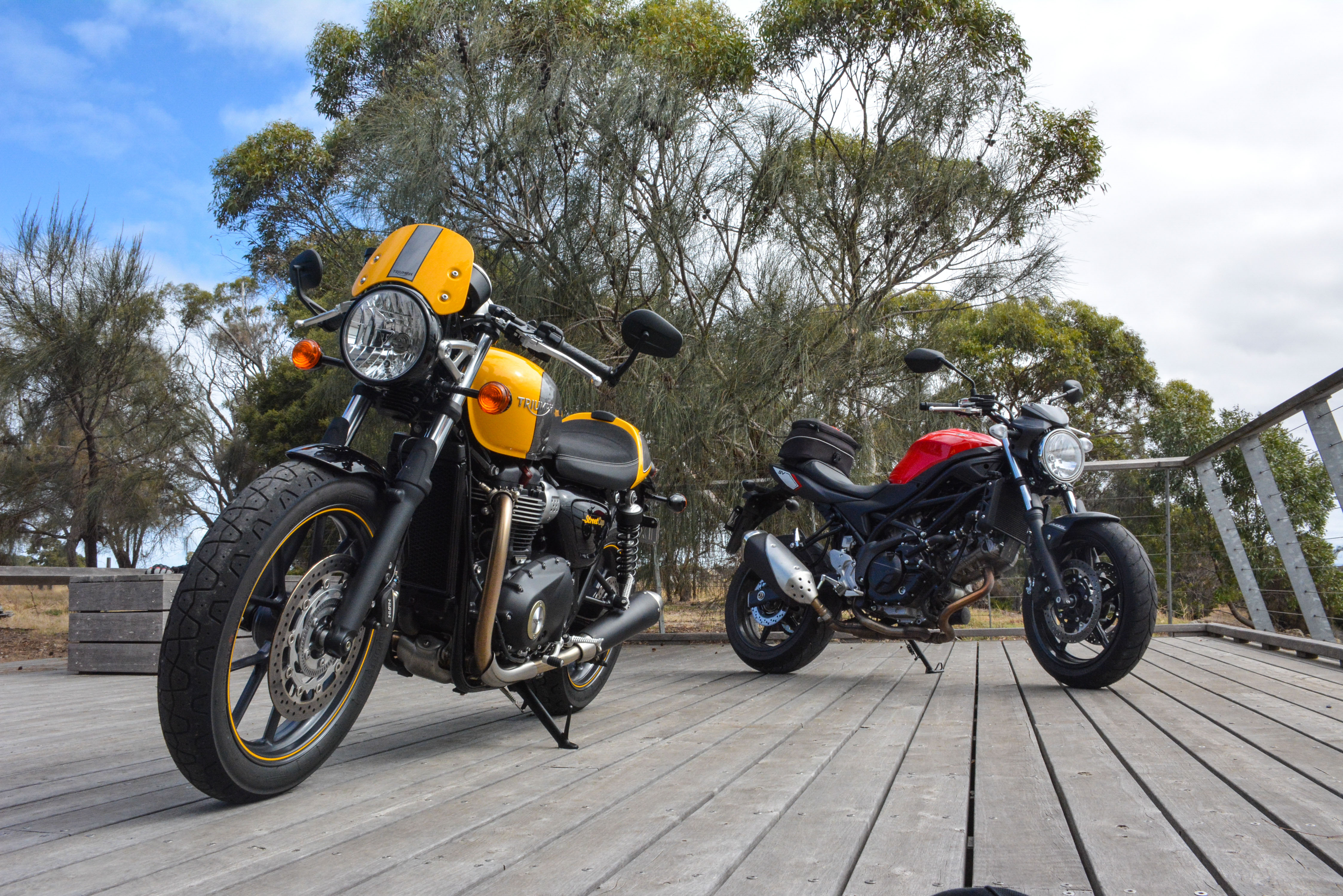Long term test: Suzuki SV650 and Triumph Street Cup