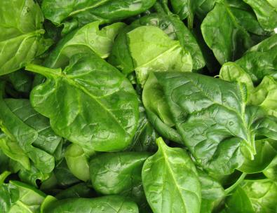 spinach_wellbeing