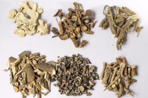 Ayurvedic herbs health wellness food root plant vital vine